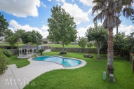 439 Scarlet Maple Drive-16